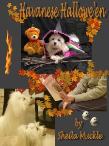 hallowe'encover